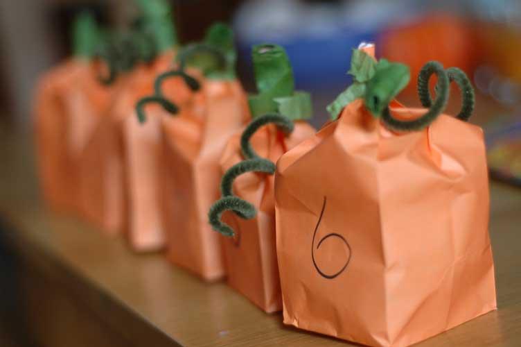 Pumpkin-bags