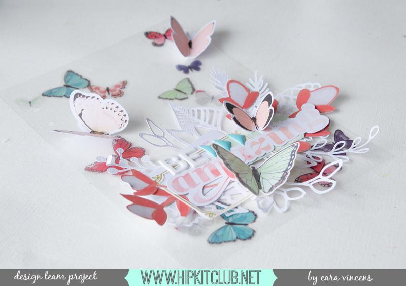ButterflyDB-FB