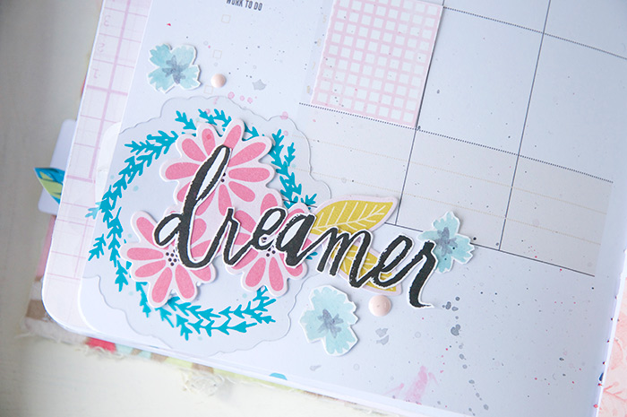 20-dreamer
